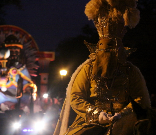 A rider on horseback in the Krewe of Hermes. (Robert Morris, UptownMessenger.com)