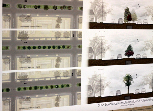 Possible options for the Louisiana Avenue landscaping. (UptownMessenger.com)