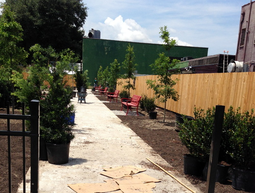 Ecole Bilingue is developing a formerly vacant lot at 820 General Pershing into a school garden. (submitted photo by Faye Lieder)