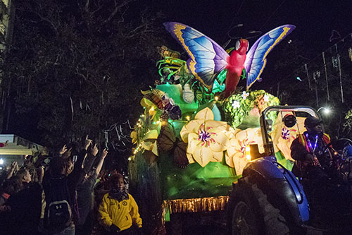 "Bacchus' ""On Butterfly Wings"" makes its way down St. Charles avenue. Bacchus 2016 rolled with the theme ""Flights of Delight."" (Zach Brien, UptownMessenger.com)"