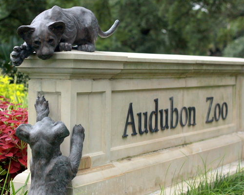 Lion cub statues play on the Audubon Zoo sign on Magazine Street, and live lions could be playing inside the zoo as well by 2019, officials say. (Robert Morris, UptownMessenger.com)
