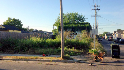 The corner lot at the beginning of the summer. (photo by Jean-Paul Villere)