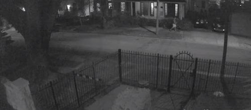 Maple Street auto burglary